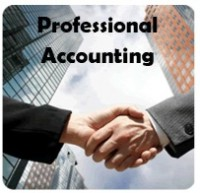 PROFESSIONAL ACCOUNTING Logo
